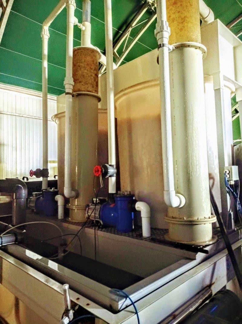 Ammonia-removing bioreactors and drum skimmer
